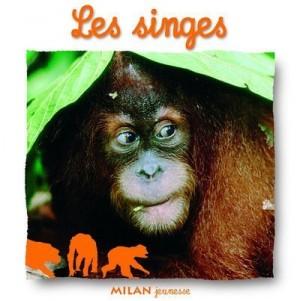 """Afficher """"Les singes"""""""