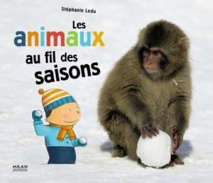 vignette de 'Les animaux au fil des saisons (Stéphanie Ledu)'