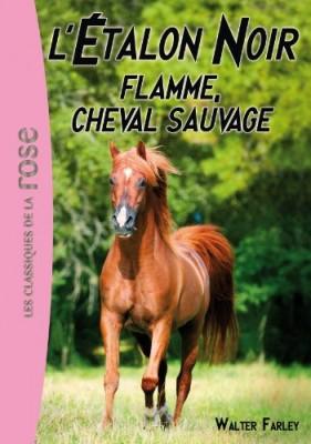 """Afficher """"L'étalon noir n° 10 Flamme, cheval sauvage"""""""