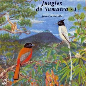 "Afficher ""Jungles de Sumatra"""