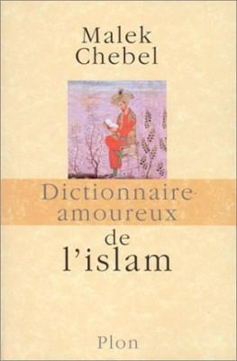 """Afficher """"Dictionnaire amoureux de l'islam"""""""
