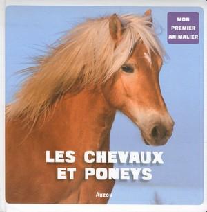 """Afficher """"Les chevaux et poneys"""""""
