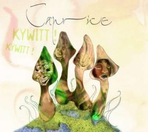 """Afficher """"Kywitt! Kywitt!"""""""