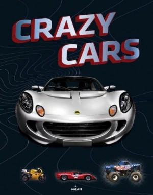 "Afficher ""Crazy cars"""