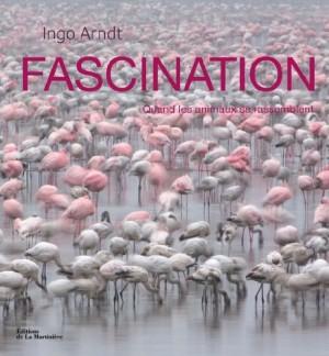 """Afficher """"Fascination"""""""