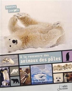 """Afficher """"À la rencontre des animaux des pôles"""""""
