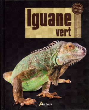"""Afficher """"Iguane vert"""""""