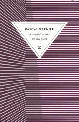 vignette de 'Lune captive dans un oeil mort (Pascal Garnier)'