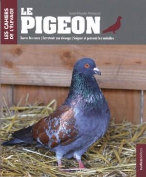"""Afficher """"Le pigeon"""""""