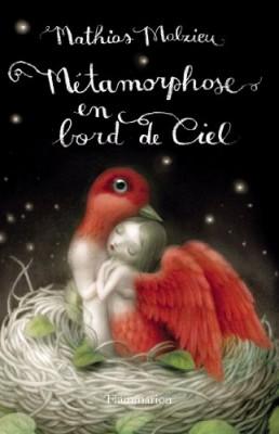 vignette de 'Métamorphose en bord de ciel (Malzieu, Mathias)'
