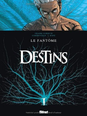 "Afficher ""Destins n° 5 Le fantôme"""