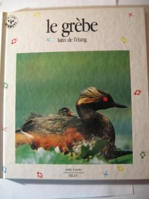 """Afficher """"Le Grèbe lutin de l'étang"""""""