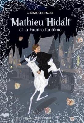 vignette de 'Mathieu Hidalf n° 2<br /> Mathieu Hidalf et la foudre fantôme (Christophe Mauri)'