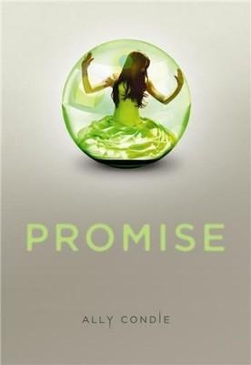 "Afficher ""Promise"""