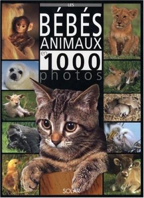 vignette de 'Les bébés animaux en 1.000 photos (Suzanne Millarca)'