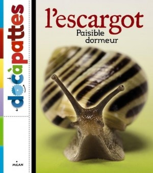 """Afficher """"L'escargot"""""""