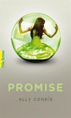 "Afficher ""Promise n° 1"""