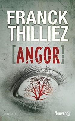 vignette de 'Angor (Franck Thilliez)'