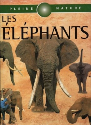 """Afficher """"Les Eléphants"""""""