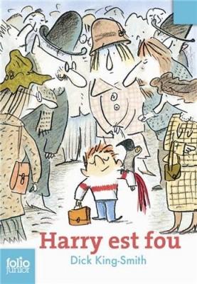 vignette de 'Harry est fou (Dick King-Smith)'