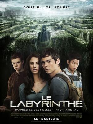 """Afficher """"Labyrinthe (Le)"""""""