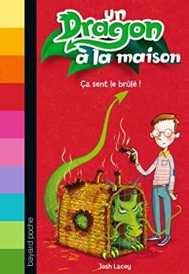 """Afficher """"Un dragon à la maison n° 1 Ça sent le brûlé !"""""""