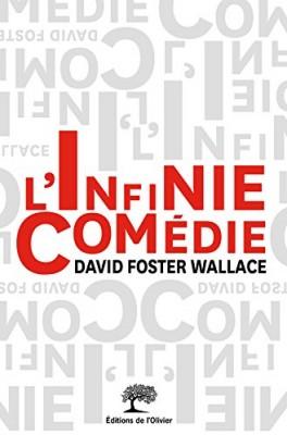 vignette de 'L'infinie comédie (David Foster Wallace)'