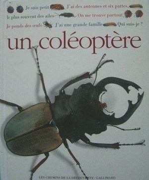 """Afficher """"Qui suis-je ? un coléoptère"""""""