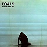 vignette de 'What went down (Foals)'