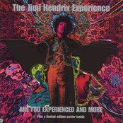 "Afficher ""Are you experienced and more"""