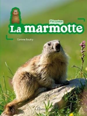 """Afficher """"P'tit curieuxLa marmotte"""""""