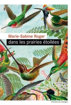 vignette de 'Dans les prairies étoilées (Marie-Sabine Roger)'