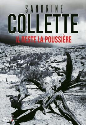 vignette de 'Il reste la poussière (Sandrine Collette)'