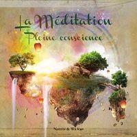 """Afficher """"Méditation pleine conscience - Découvrez le bien-être par la relaxation guidée"""""""