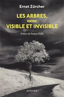 """Afficher """"Les arbres, entre visible et invisible"""""""