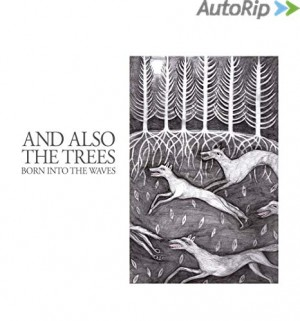 vignette de 'Born into the waves (And Also the Trees)'
