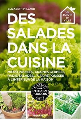 vignette de 'Des salades dans la cuisine (Elizabeth Millard)'