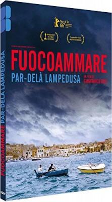 """Afficher """"Fuocoammare, par-delà Lampedusa"""""""