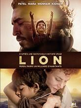 """Afficher """"Lion DVD"""""""