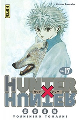 "Afficher ""Hunter x Hunter n° 17"""