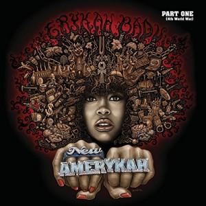 """Afficher """"New Amerykah"""""""