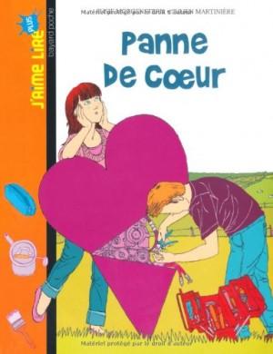 """Afficher """"Panne de coeur"""""""