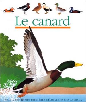 """Afficher """"Le canard"""""""