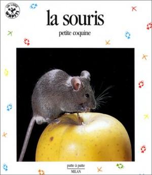 "Afficher ""La Souris petite coquine"""