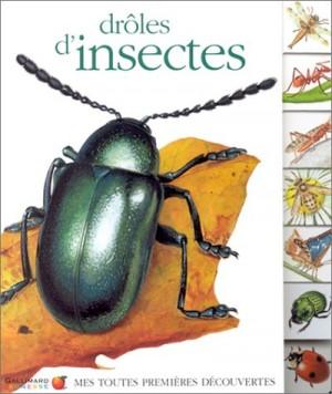 """Afficher """"Drôles d'insectes"""""""