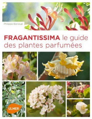 "Afficher ""Fragrantissima"""