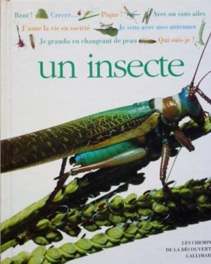 """Afficher """"Qui suis-je ? un insecte"""""""