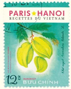 vignette de 'Paris-Hanoi (Mido Youssouf)'