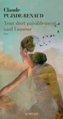 vignette de 'Tout dort paisiblement sauf l'amour (Claude Pujade-Renaud)'