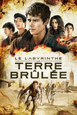"""Afficher """"Le Labyrinthe n° 2 Le labyrinthe - La terre brûlée"""""""